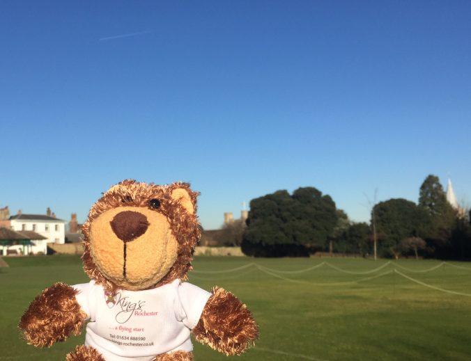 Roffa the teddy bear in the school field
