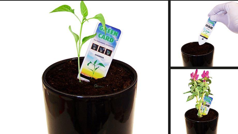 Grow Cards